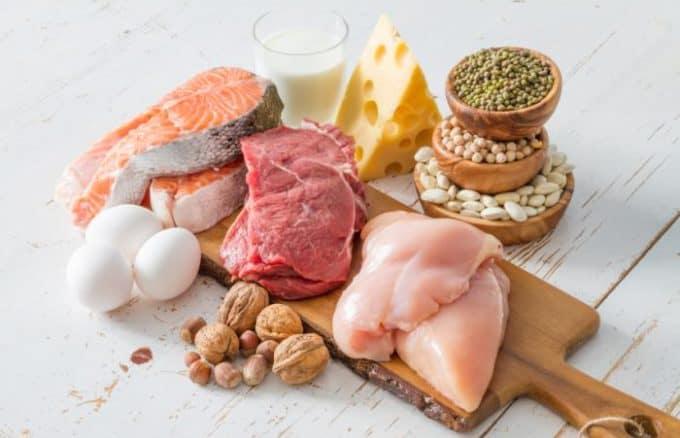 fehérje - protein