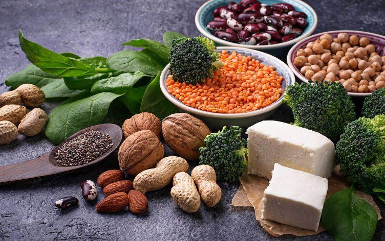 növényi fehérjék