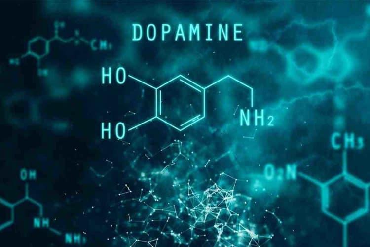 dopamin hormon