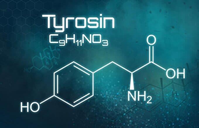 l tirozin